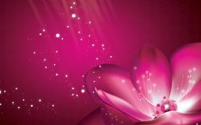 Wallpaper flower, background, pink, petals, purple