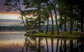 Picture trees, lake, Wisconsin, Wisconsin, Lake Delton, lake Delton