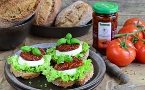 Picture bread, tomatoes, sauce, Basil, mozzarella