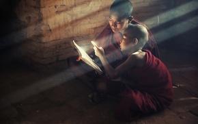 Picture light, children, book, saint, book, children, reading, Buddhism, kids, monks, monks, read, buddism