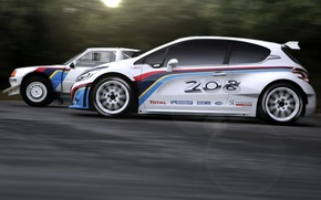 Picture auto, sport, race, legend, rally, T16, Peugeot 208