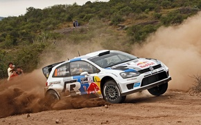 Picture rally, wrc, polo, 2013, volksvagen, S. Ogier