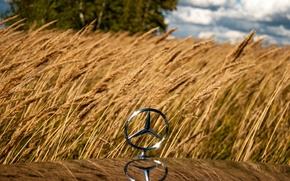 Picture wheat, field, icon, ear, rye, mercedes, mercedes-benz, Mercedes, sight, gelding, Mercedes, benz, 190, w201, 190e