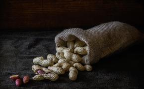 Picture macro, walnut, peanuts, pouch