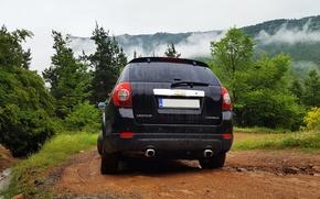 Picture Chevrolet, trees, nature, 4x4, Bulgaria, Captiva