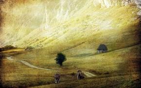 Wallpaper field, landscape, style, cattle