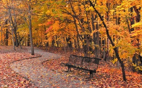 Picture autumn, the city, Park, bench