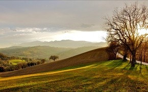 Picture road, field, the sky, grass, clouds, trees, mountains
