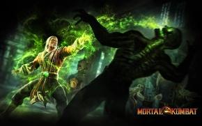 Picture power, skeleton, fighters, Mortal Kombat 9, Mortal Kombat