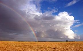 Wallpaper rainbow, field, clouds