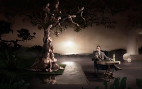 Wallpaper tree, figure, table, male, alcohol, women, sunset