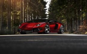Picture forest, Lambo, mansory, tuning, Lamborghini, lamborghini lp700-4 aventador