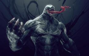 Picture Marvel, Venom, Venom, Spider man, Spider-man