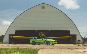 Picture green, mustang, ford, 302, boss, angar