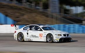 Wallpaper BMW, GT2, ALMS