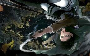 Picture leaves, night, emblem, cloak, swords, levi, shingeki no kyojin, the invasion of the giants, the …