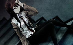 Picture Anime, Makise Kurisu, The Makis To Kuris, Steins Gate, Gate Of Steiner