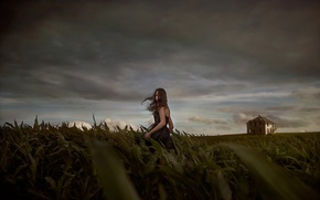 Picture field, girl, night