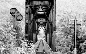 Picture road, forest, bridge, photo, iron, black and white, black and white