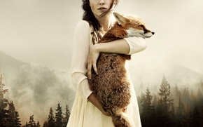 Picture forest, girl, art, Fox