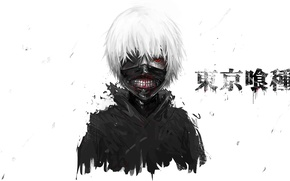 Picture eyes, hair, mask, guy, anime, art, Tokyo Ghoul, Ken Kanek