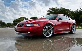 Picture Mustang, Ford, 2004