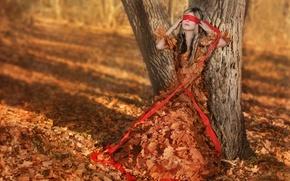 Picture autumn, leaves, girl, headband, Autumn girl
