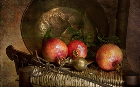 Picture texture, fruit, still life, garnet, Taz, copper