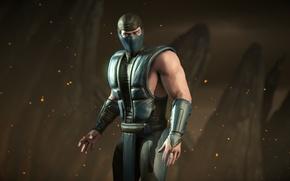 Picture Sub-Zero, sub zero, Mortal Kombat X
