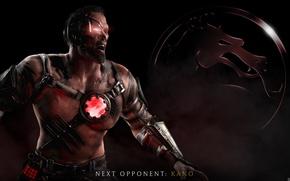 Picture Kano, Mortal Kombat X, Mortal Kombat 10, Kano