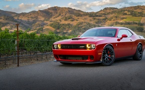 Picture Dodge, Challenger, Red, Hellcat