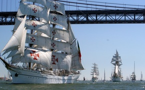 Picture sea, the sky, bridge, Strait, people, boat, ship, sailboat, cross, Bay, parade, regatta