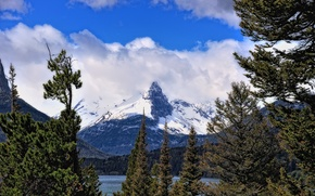 Picture forest, the sky, clouds, snow, trees, mountains, lake, spruce