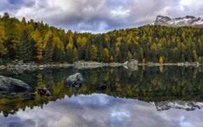 Picture autumn, forest, trees, mountains, lake, reflection, Switzerland, Switzerland, The Val Field, Lago di Saoseo, Poschiavo, …