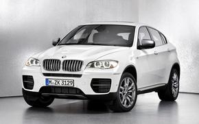 Picture lights, BMW, grille, crossover, prestige