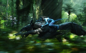Picture forest, speed, avatar
