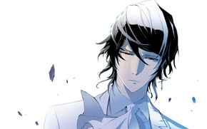 Picture look, shirt, manga, Ray, Ray, comic books, the ancient tie, Nobless, Noblesse, Cadiz Of Atrama …