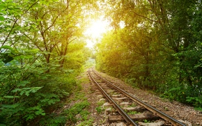 Wallpaper gravel, trees, the bushes, greens, sleepers, railroad, the sun, rails, forest