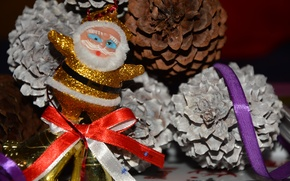 Picture new year, Santa Claus, Holiday, fir cones