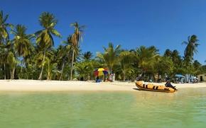 Wallpaper tropics, palm trees, boat, vacation, 152