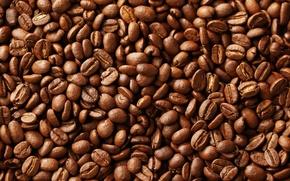 Picture macro, coffee, grain, texture, brown