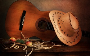 Picture apples, guitar, hat, ears, fruit, still life