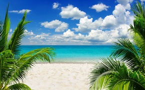 Wallpaper sand, sea, beach, the sky, the sun, tropics, palm trees, the ocean, shore, summer, sunshine, ...