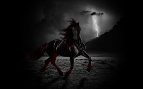 Picture freedom, night, clouds, horse, the wind, lightning
