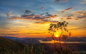 Picture the sun, mountains, lake, tree, dawn, morning