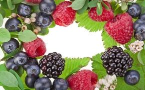 Picture leaves, flowers, berries, raspberry, blueberries, BlackBerry