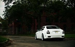 Picture Maserati, Quattroporte, Tree, White, Bumper, The building, The trunk