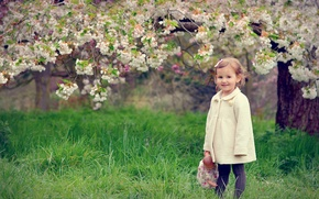 Picture spring, doll, girl, flowering