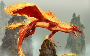 Picture Dragon, Rocks, Fire, dragon blade wrath of fire