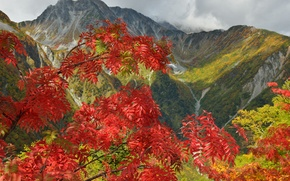 Picture autumn, the sky, leaves, trees, mountains, clouds, etki